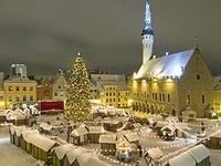 В центре Таллина упала главная рождественская ель