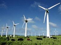 Global Wind Power рассматривает Воложин как площадку под строительство ветряной станции