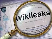 """WikiLeaks: В Партии регионов — """"откровенные преступники"""""""
