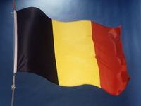 В Бельгии сегодня состоятся парламентские выборы