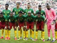 Сборная Камеруна отказалась лететь на ЧМ-2014
