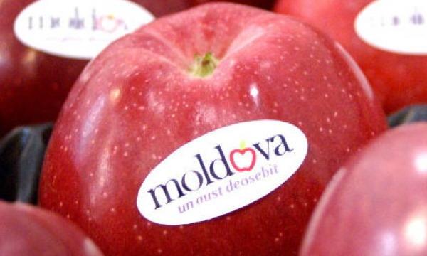 Европарламент разрешил Молдове увеличить беспошлинные поставки фруктов в ЕС
