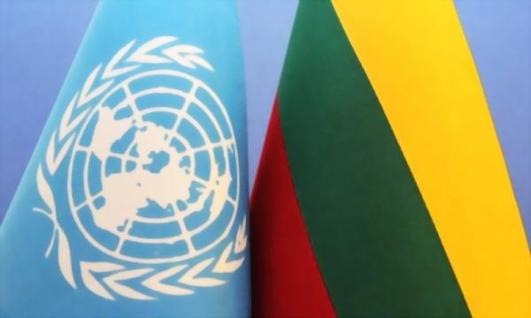 Литва готовится стать председателем Совбеза ООН