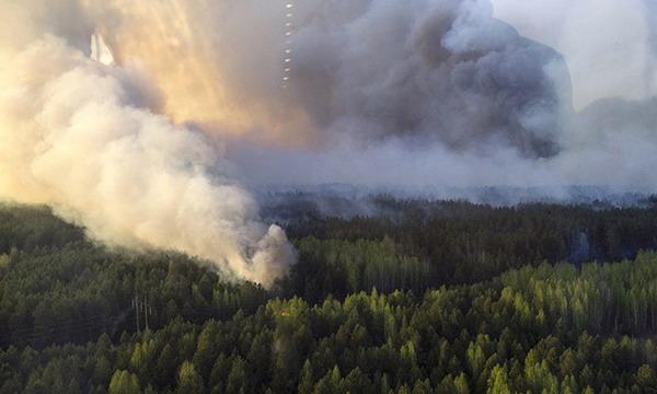 Пожар возле ЧАЭС локализован, но ветер может занести радиацию в Беларусь