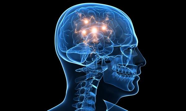 Ученые: старение мозга начинается в 43 года