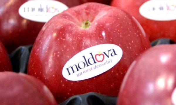 Молдова может возобновить поставки продовольствия в Россию