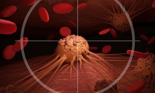 Популярная профилактика рака оказалась мифом